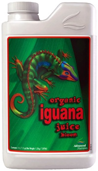Orgaaninen Iguana Juice Bloom 1.0 L